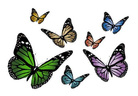 butterflys Stock Photo - 622209