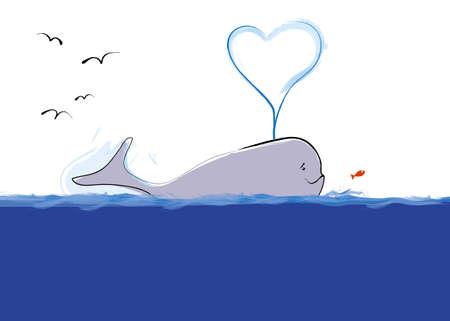 Whale photo