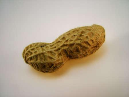 monkey nut: Monkey Nut Stock Photo