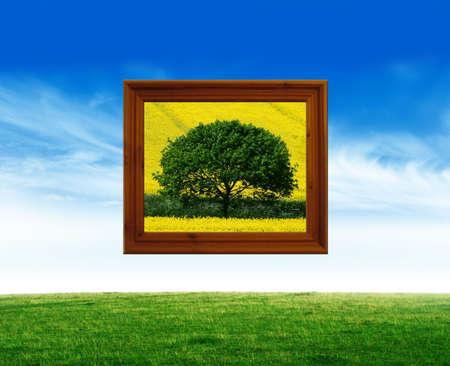 natures: Natures art