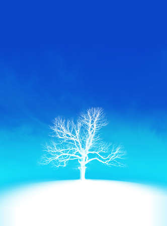 frost Stock Photo - 2096982