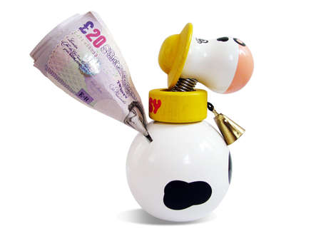 winning stock: Cow money box Stock Photo