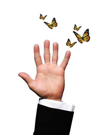 Hand with butterflies photo