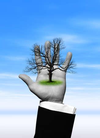 Tree in hand Stock Photo - 3022883
