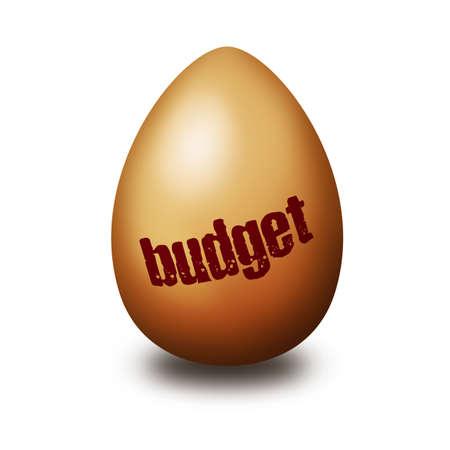 Budget egg photo