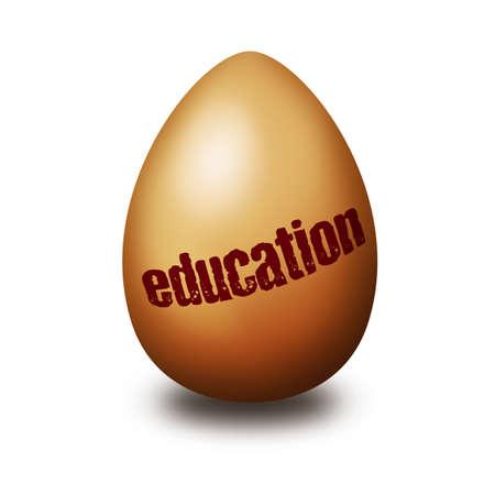 education egg photo