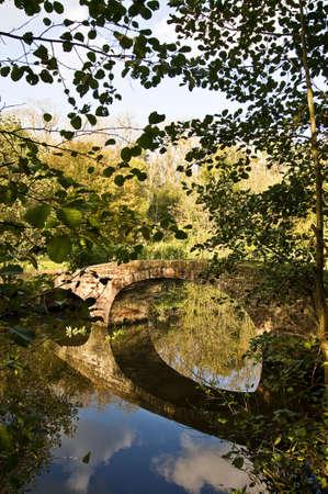 foot bridge: Foot bridge