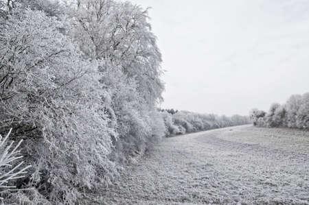 Winter landscape Stock Photo - 4140969