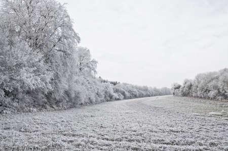 Winter landscape Stock Photo - 4140968