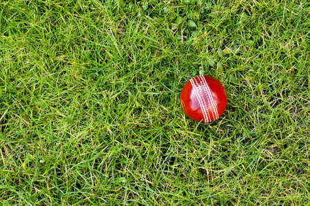 cricket field: Cricket ball