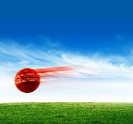 cotton ball: Cricket ball