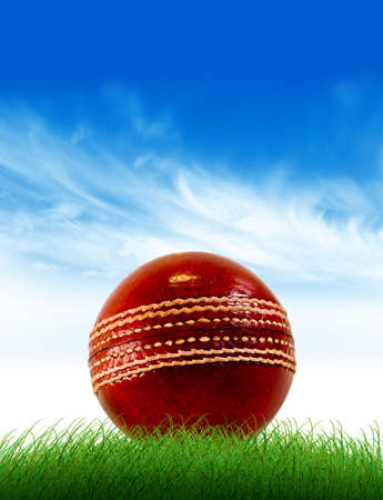 cricket bat: Cricket ball