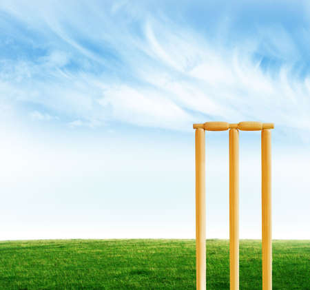 cricket field: Cricket stumps