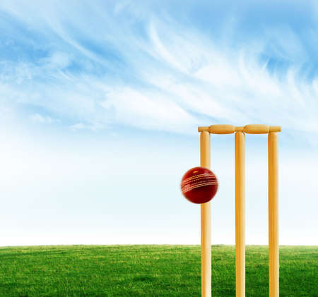 cricket field: Cricket stumps and ball