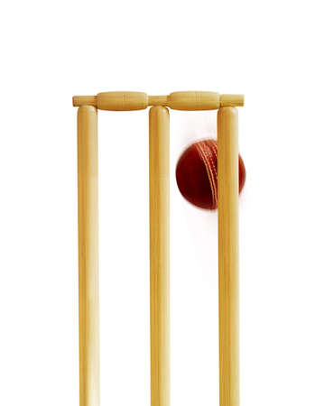 Cricket stumps and ball photo