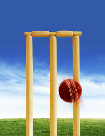Cricket stumps and ball photo