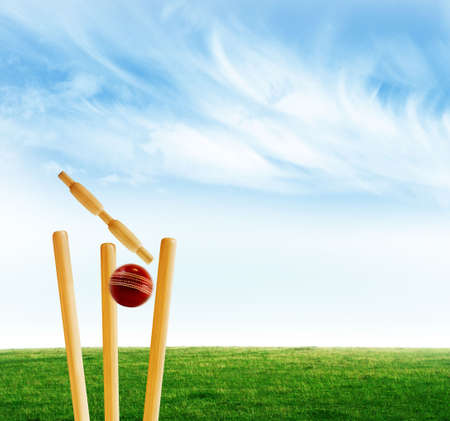 play ground: Cricket stumps