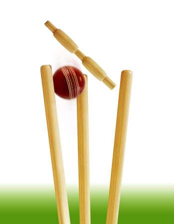 pitch: Cricket stumps