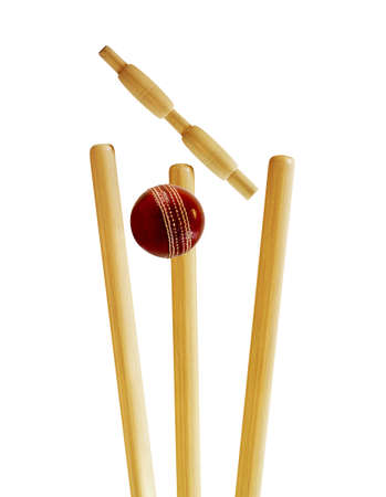 cricket: Cricket ceppi