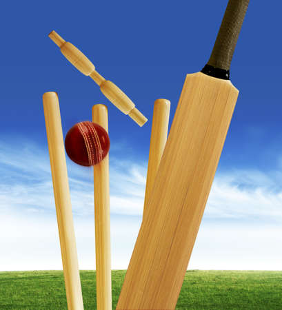 cricket field: Bowled out Stock Photo
