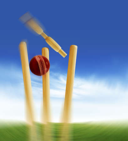 Cricket stumps photo