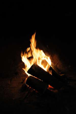 log fire: stufa a legna Archivio Fotografico