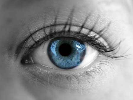 close up eye: Blue eye Stock Photo
