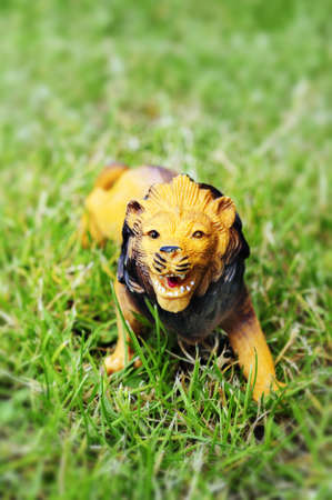 lion figurines: plastic toy lion Stock Photo