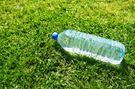 plastic water bottle on grass Stock Photo - 9267158