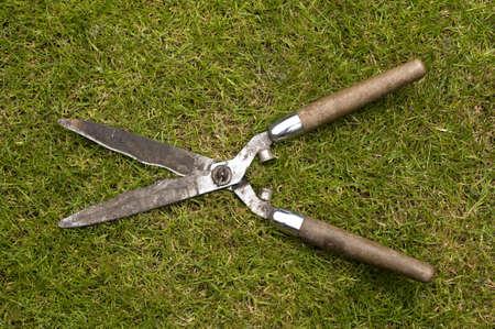 garden shears: tijeras de jard�n