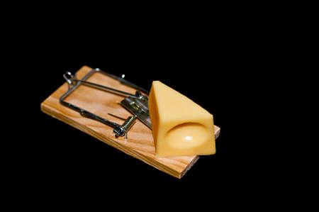 piege souris: Fromage sur pi�ge � souris Banque d'images