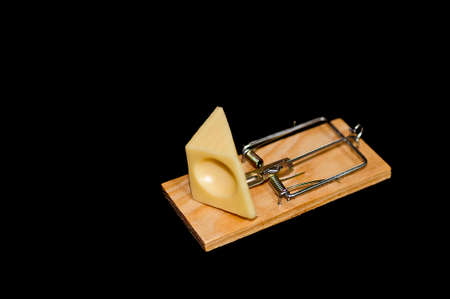 Cheese on mousetrap photo