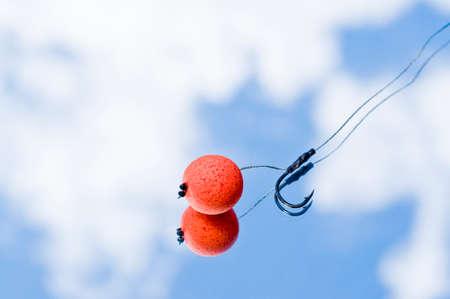 bait: Carp Fishing Bait