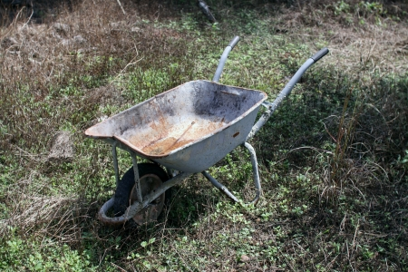 ���push cart���: Construction push cart on bush Stock Photo