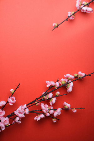 Plum Flowers Blossom on red background