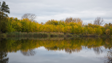 A small lake in the Park, the yellowing trees along the shore. The reflection of sky and trees in the water of the lake. A beautiful scenic place
