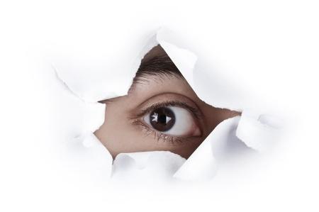 Imagen aislado del único ojo marrón mirando a través de un agujero en el libro blanco