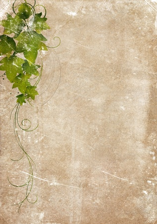 rundown: Grungy backdrop of old paper texture with floral ornaments