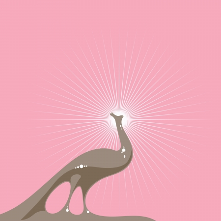 illustration of an elegant peacock on pink background Vector
