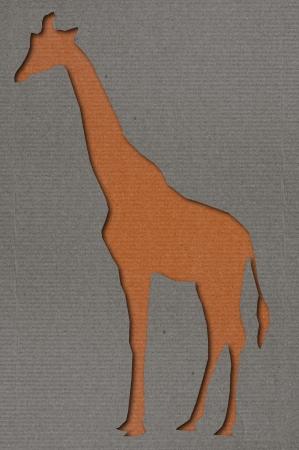 cutting grass: Giraffe Cutting Paper Art Stock Photo