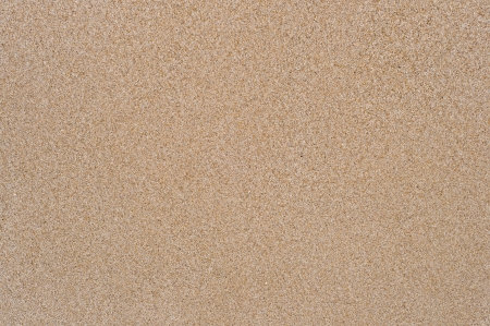 Plain sand texture Stock Photo - 18887858