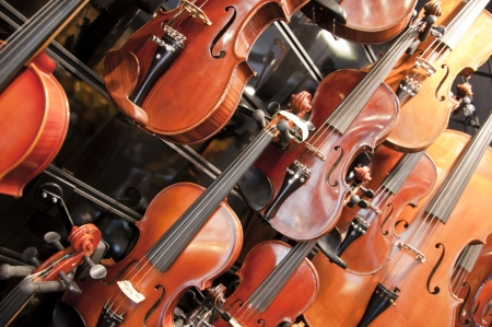 Violins and cellos Stock Photo - 18813039