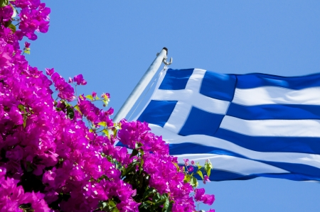 Greek flag in flowers photo