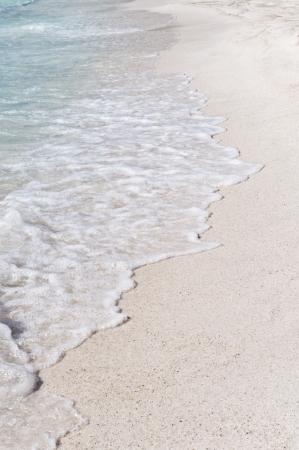 foamy: Sandy beach with foamy waves