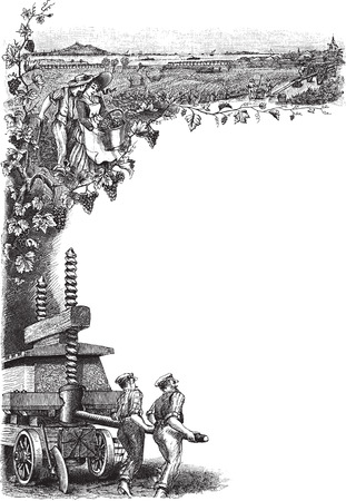 Detailed engraved frame illustration of workers at vineyard