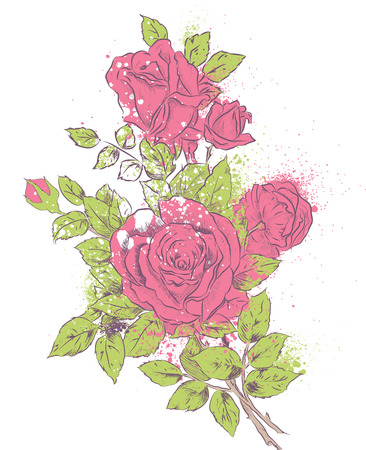 Vector illustration hand drawing of a bunch of shabby roses with paint splashes Vector