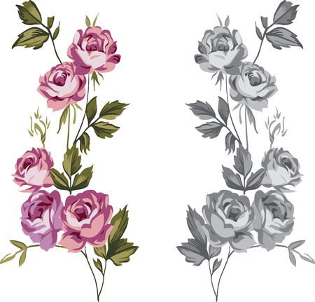 Vintage style shabby roses vector illustration design elements in colored and gray-scale versions Vector