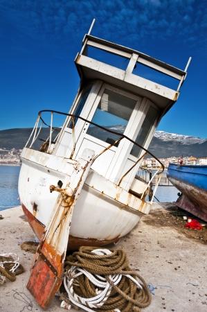 fisher animal: Gemlik Bay, Bursa - Turkey