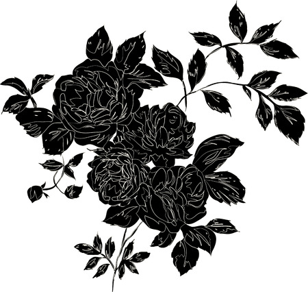 Decorative black rose bouquet with outlines, isolated black on white Vector