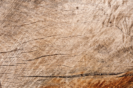 Timber wooden texture background photo